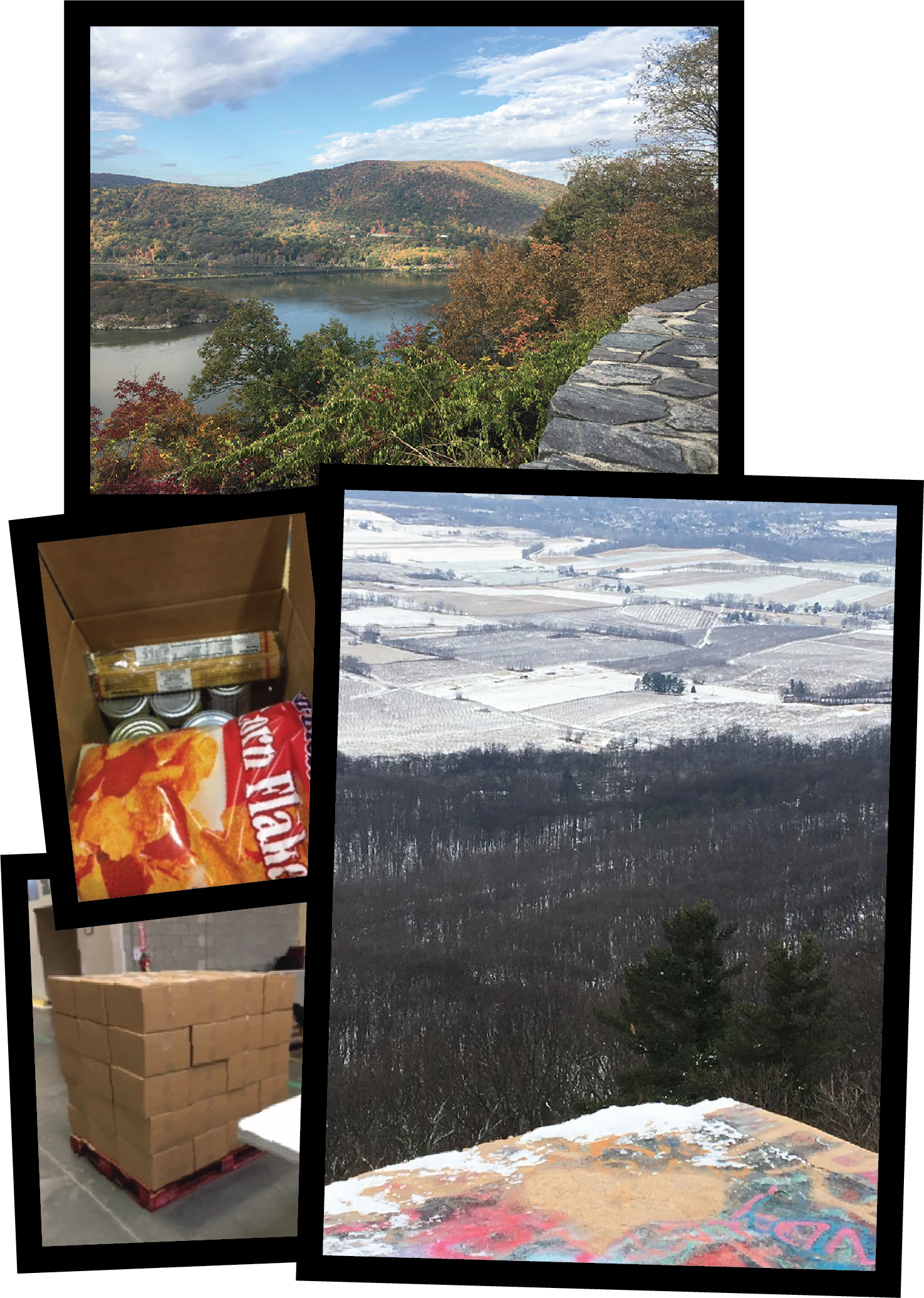 There trees in a snow field, snacks in a box, a lake and mountains, and boxes in the warehouse